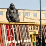 A big gorilla on top of a carpet shop